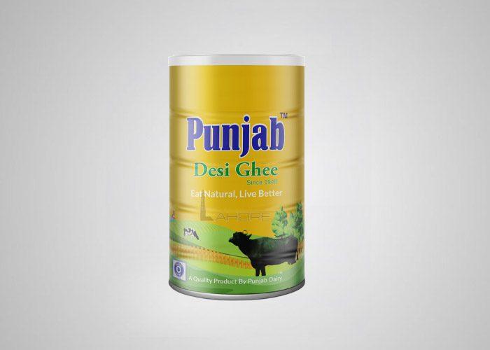 Punjab Dairy Design